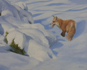 Red Fox in Snow (thumbnail)