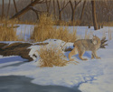 Lynx in Winter (thumbnail)