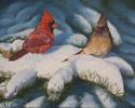 Cardinals (thumbnail)