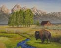 Bison at Tetons (thumbnail)