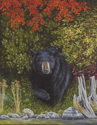 From the Shadows - Black Bear (thumbnail)