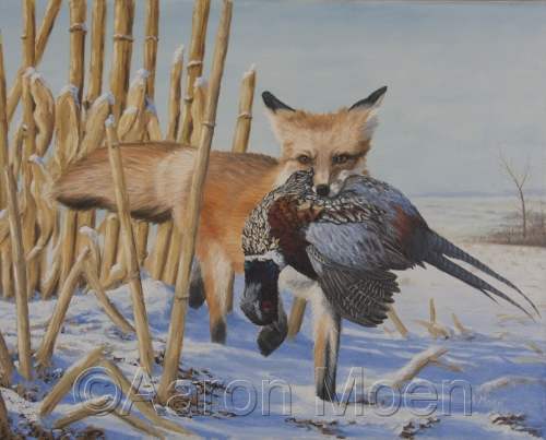 Red Fox with Pheasant
