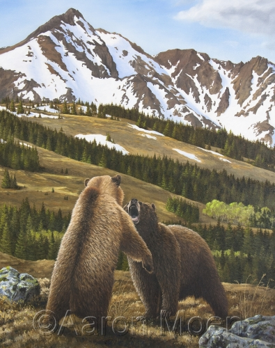 Grizzlies at Yellowstone
