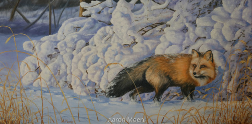Red Fox and Snowy Bushes
