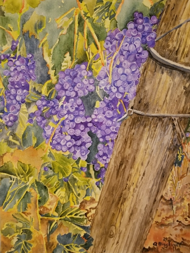 Grapes 2 by Anita Bischoff