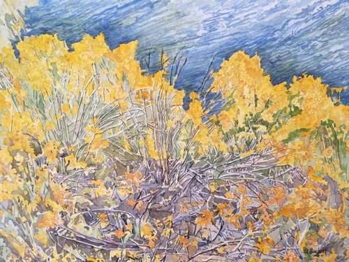 Rabbit brush by River by Anita Bischoff