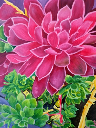 Colorful Succulents by Anita Bischoff