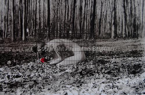 Broken Heart by Ann-Mari Broman