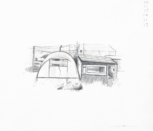 Polytunnel and shed I