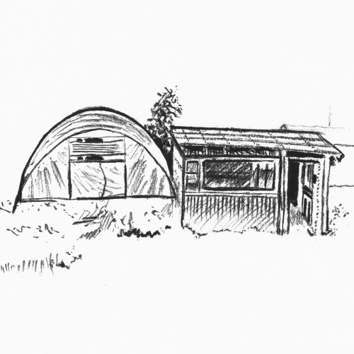 Polytunnel and shed IV