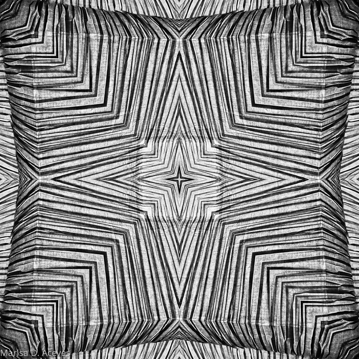 OPTICAL ART BLACK AND WHITE ZEBRA PRINT: DOUBLE SQUARE (large view)