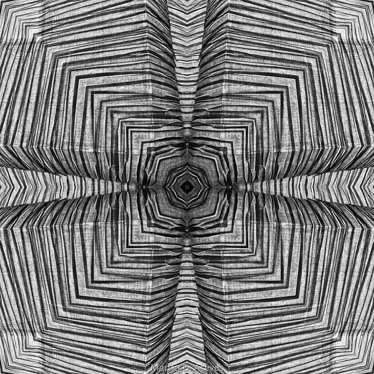 BLACK AND WHITE OPTICAL ART ZEBRA PRINT: HEART CLOVER (large view)