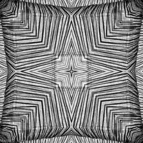 OPTICAL ART BLACK AND WHITE ZEBRA PRINT: DOUBLE SQUARE by Marisa D. Aceves