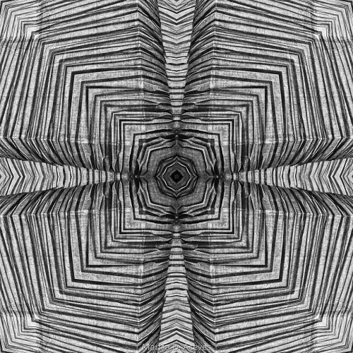 BLACK AND WHITE OPTICAL ART ZEBRA PRINT: HEART CLOVER