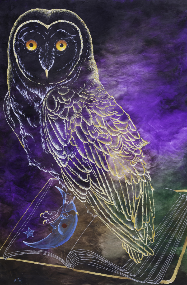 adam peot art painting of a translucent owl representing the spacious potential of dreams siting on an open blank slate book,  representing the awareness in us that never sleeps.  (large view)