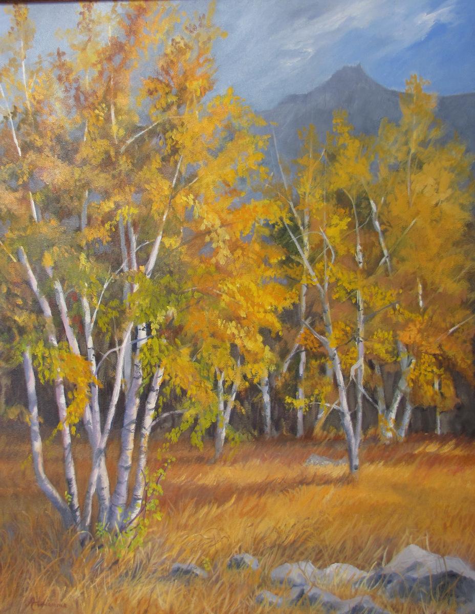 Montana Aspens (large view)