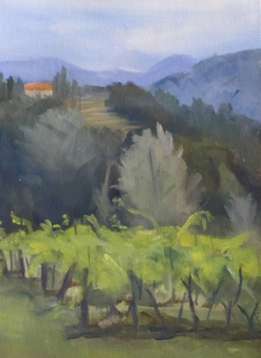 Barga Vineyard (large view)