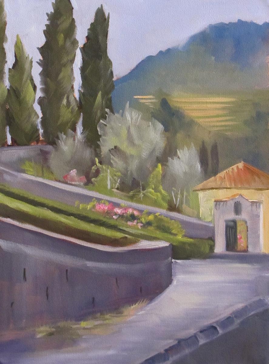 Street to Duomo (large view)