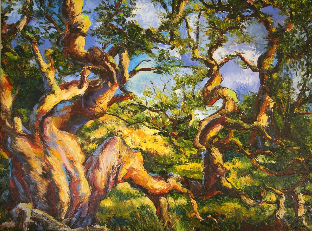 Koa Trees Two (large view)