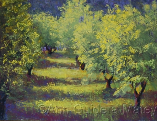Olive Grove #2 - Yellow and Purple