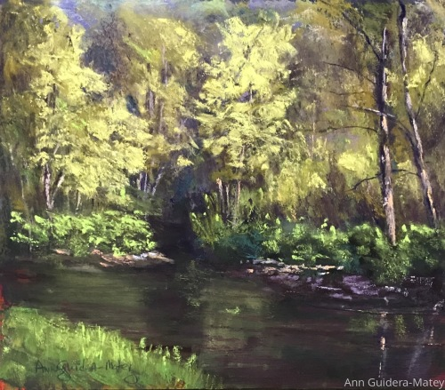 Chester Creek - Spring