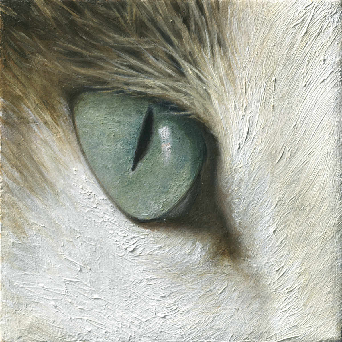Cat's Eye (large view)