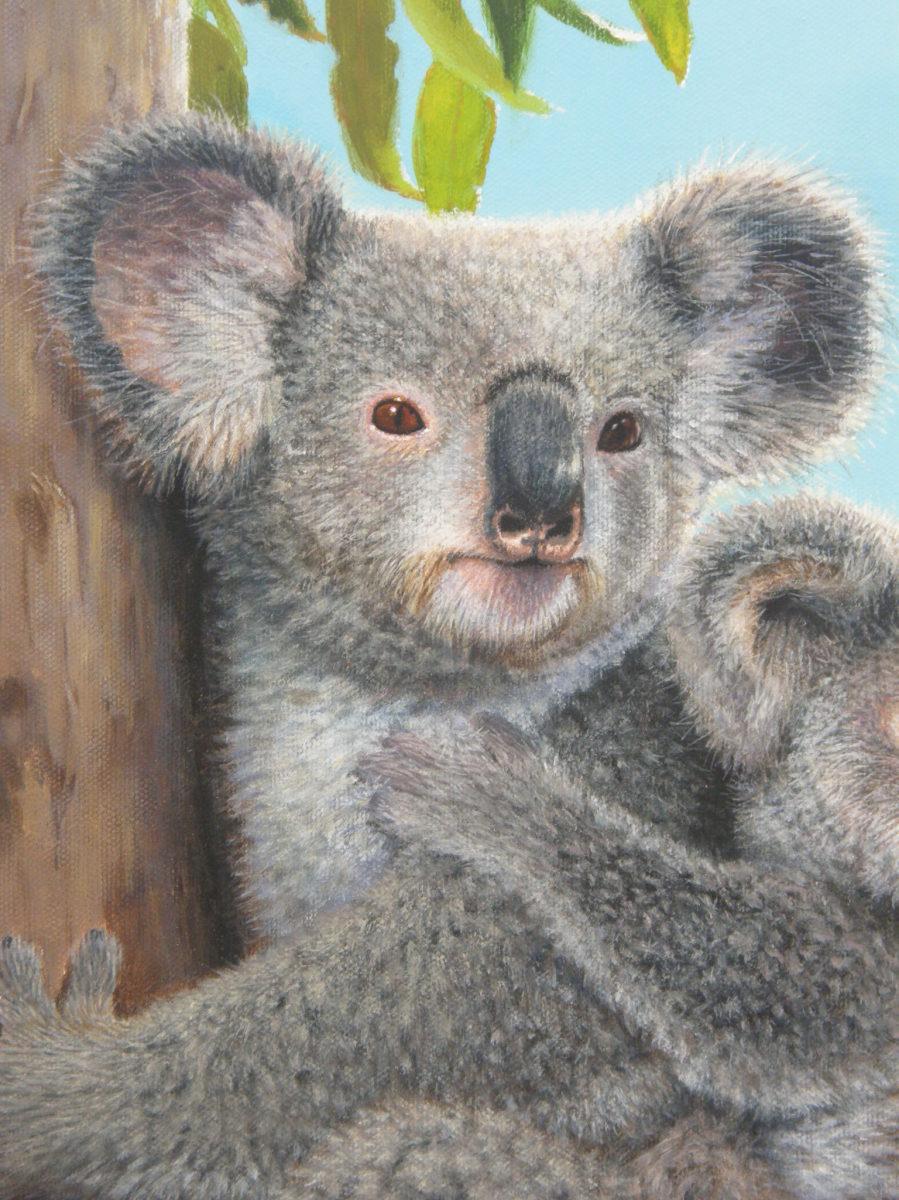 Koalas (Detail) (large view)