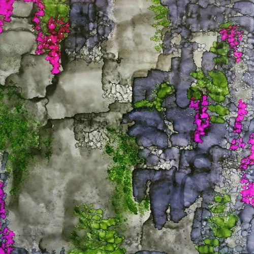 Vines on a Stone Wall