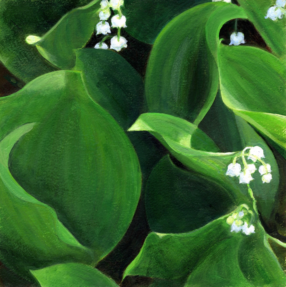 intimate view of lily of the valley (large view)