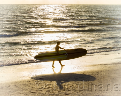 """"""" Surfin' Done """" by Anthony Macoy Ordinaria"""