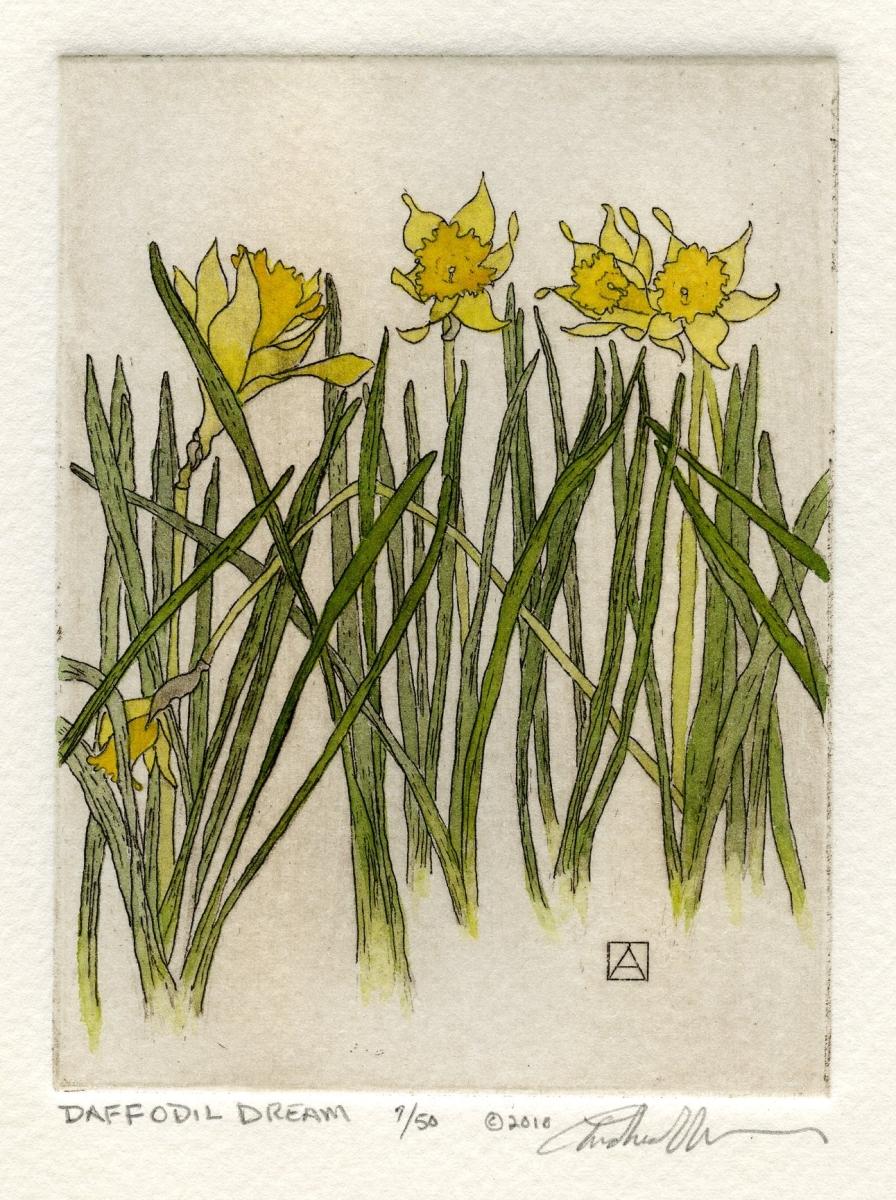 Daffodil Dream (large view)