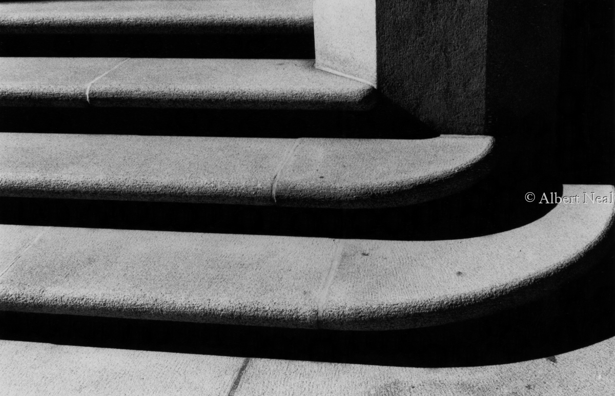 Sacred Heart Cathedral Steps, Newark,NJ (large view)