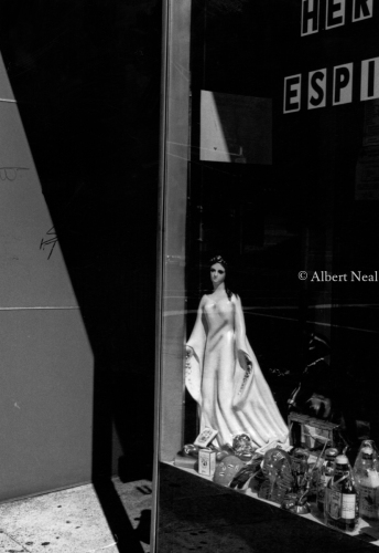 Religous Store Elizabeth,NJ