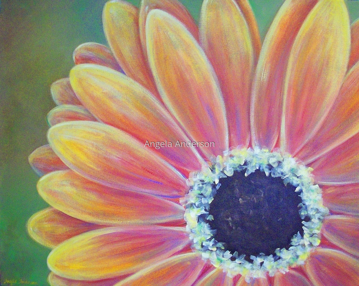 Gerber Daisy (large view)