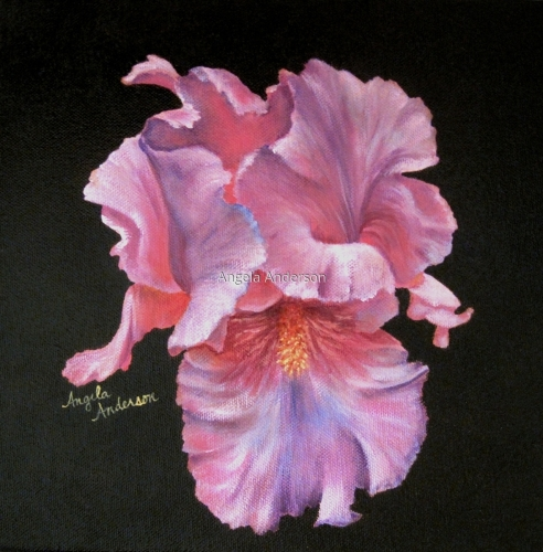 Painting Quot Lavender Iris Quot Original Art By Angela Anderson
