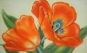 orange tulips (thumbnail)