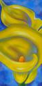 Yellow Calla Lilies (thumbnail)
