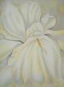White Iris (thumbnail)