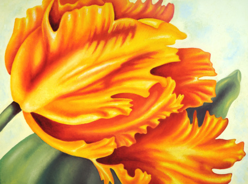 Gold Parrot Tulip (large view)