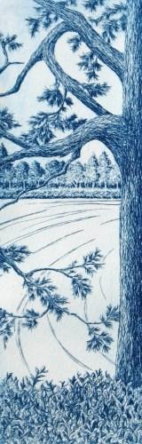 Lakeside Pine