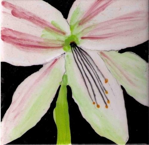 amaryllis tile white and shell pink