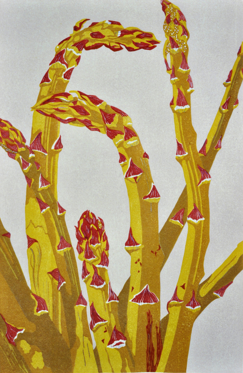 Asparagus (large view)