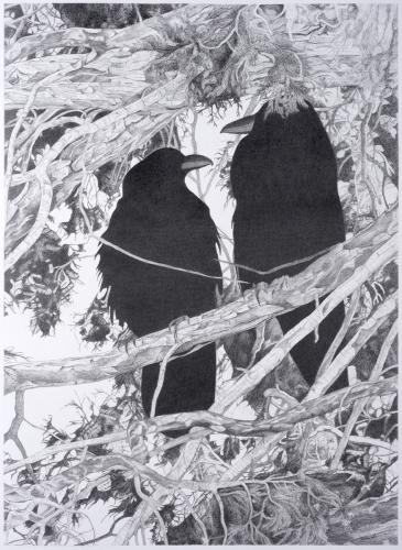 Ravens of Bryce Canyon by Ann Lehman