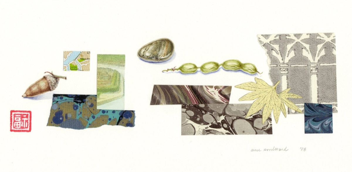 Watercolor of still life objects - acorn, stone, and locust seed pod - combined with abstract collage elements (large view)