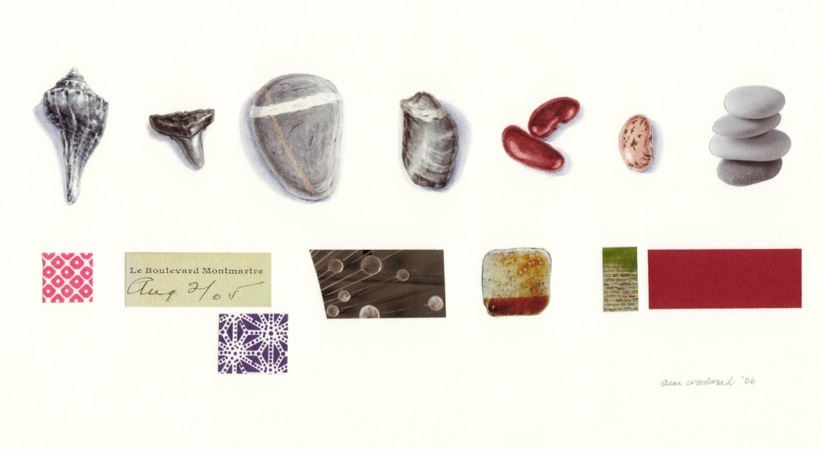 Watercolor of still life objects in a row - fossil shells and dry beans - combined with a row of collage elements (large view)