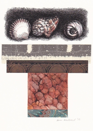 Ink drawing of shells, watercolor of marble tile, combined with abstract collage elements (large view)