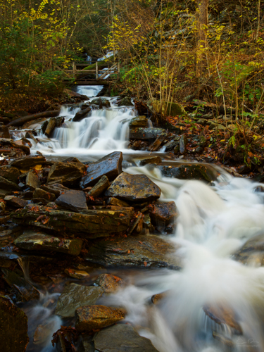 Ricketts Glen  by Adrian Rodriguez Photography