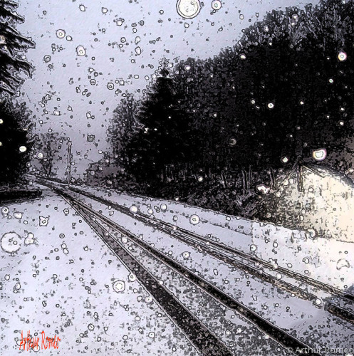 Snow falling on a country road