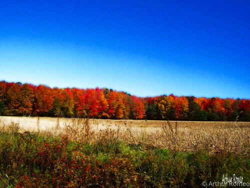 Autumn Fields by Arthur Romeo, romeo.artspan.com