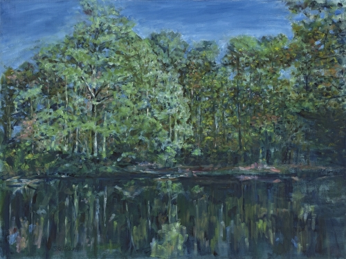 River Park, Woodland Images II